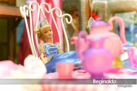 Fotografia de Aniversário Infantil - Fotógrafo Reginaldo Ornellas (5)